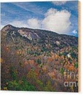 Autumn Summit Wood Print