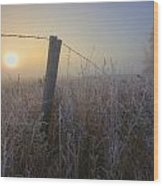Autumn Sunrise Over Hoar Frost-covered Wood Print