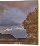 Autumn Sunset Wood Print