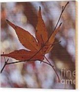 Autumn Swing Wood Print
