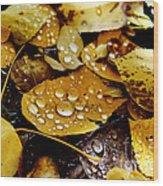 Autumn Tears Wood Print