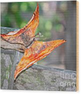 Autumn - The Year's Loveliest Smile Wood Print by Christine Till