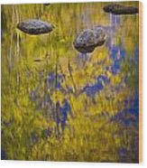 Autumn Tree Reflections With Rocks On The Muskegon River Wood Print