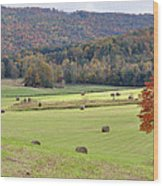 Autumn Valley Hay Bales Wood Print