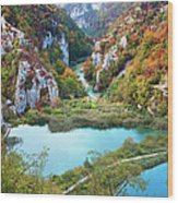 Autumn Valley Landscape Wood Print