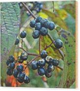 Autumn Viburnum Berries Series #2 Wood Print