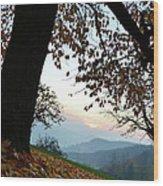 Autumn View Wood Print by Bruno Santoro