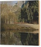 Autumn View Of The Park With Half Dome Wood Print