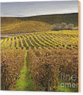 Autumn Vines Wood Print