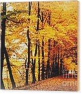 Autumn Walk In Belgium Wood Print