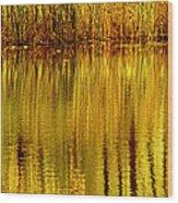 Autumn Water Reflection Abstract II Wood Print
