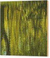 Autumn Water Reflection Abstract IIi Wood Print