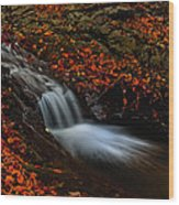 Autumn Waterfall Wood Print