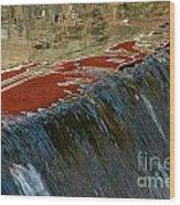 Autumn Waterfall Reflections Wood Print