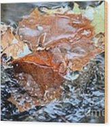 Autumn Waters Wood Print