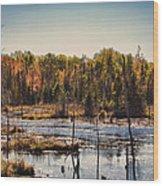Autumn Wetland Wood Print