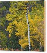 Autumn Wonder Wood Print