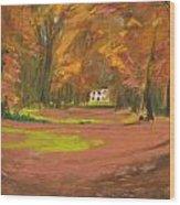 Autumn Woods 3 Wood Print