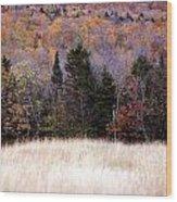 Autumnfield 2 Wood Print