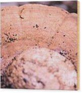 Autumn's Abstract Mushroom Wood Print
