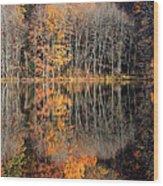 Autumns Art Wood Print