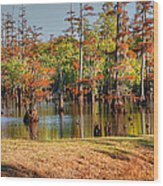 Autumn's Beauty And Reflection Wood Print