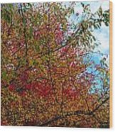 Autumns Beauty Wood Print