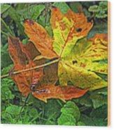 Autumn's Gift Wood Print