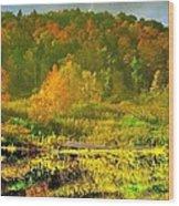 Autumn's Glory Wood Print