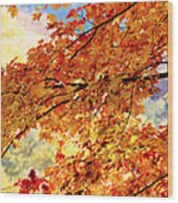 Autumns Gold Great Smoky Mountains Wood Print by Rich Franco