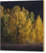Autumn's Last Hurrah Wood Print