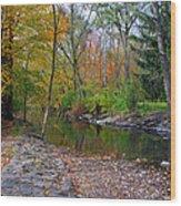 Autumn's Splendor Wood Print