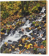 Autumn's Staircase Wood Print by Mike  Dawson