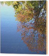 Autumn's Watery Reflection Wood Print