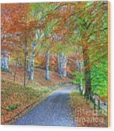 Autumns Way Vert Wood Print by John Kelly
