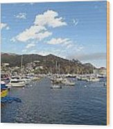 Avalon Bay Catalina Island Wood Print