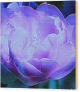 Avatar's Tulip Wood Print