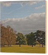 Avery Hill Park Wood Print