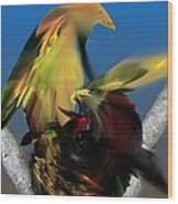 Avian Dreams Series 1-1311 Wood Print