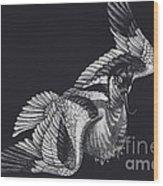 Avocet Wood Print