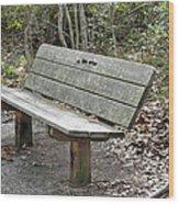 Awaiting Companionship Wood Print