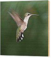 Awesome Hummingbird Wood Print
