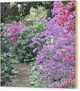 Azalea Trail Wood Print