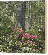Azalea Woods Wood Print