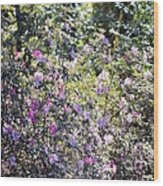 Azaleas In The Forest Wood Print