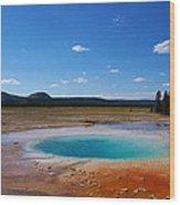 Azure Pool Wood Print
