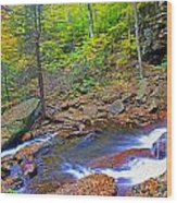 B Reynolds Falls Panorama Wood Print