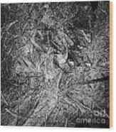 Abstraction 547 - Marucii Wood Print