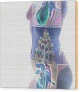 b.1950 H Wood Print