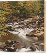 Babcock Creek Scene 4 Wood Print
